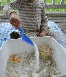 Beach Sensory Bin and Lesson Ideas