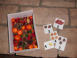 Fall and Thanksgiving Sensory Bin, Patterning, and Sorting Preschool Lesson Plan