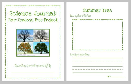 Four Seasons Science Kindergarten Lesson Plan and Kindergarten Printable