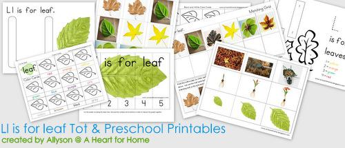 Fall or Autumn Preschool Printable