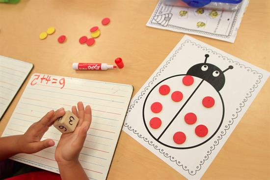 Addition Activity with Ladybugs