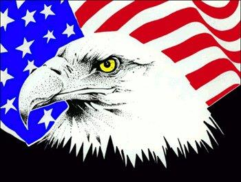Patriotic Eagle and Flag Clip Art Image