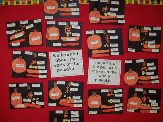 Fall Pumpking Science Kindergarten Lesson Plan