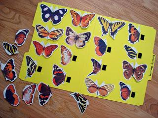 Spring Butterfly Matching Game Preschool Printable
