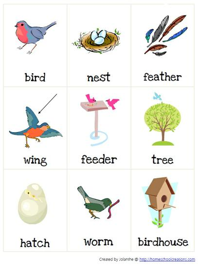 Spring Bird Vocabulary Puzzle Preschool Printable