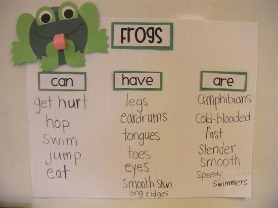 Can, Have, Are Chart All About Frogs