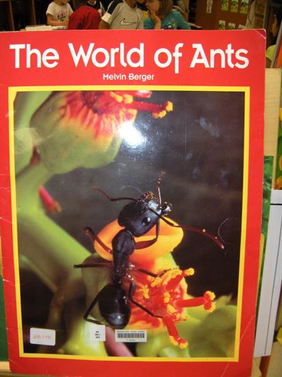 Cover Page - The World of Ants